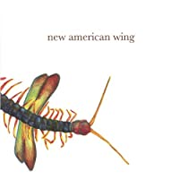 New American Wing