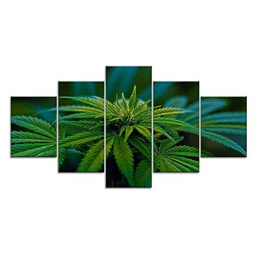 194Tdfc Cannabis Hanf Pflanzen Marihuana 5 Teilig Leinwand Bilder Wanddekoration Gemälde Moderne Wohnzimmer Schlafzimmer Auf Wandkunst Für Wand Aufhängen Home Dekoration Hd Print 150 * 80Cm