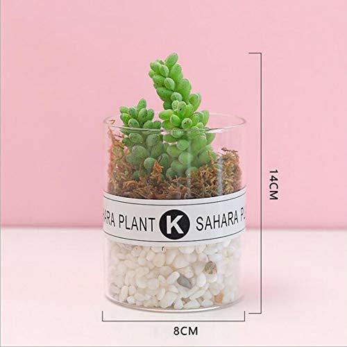 RUIZHISHUHome/Office Interieur met Kunstmatige Planten, Mini Nep Planten, met Transparante Glazen Potten,C