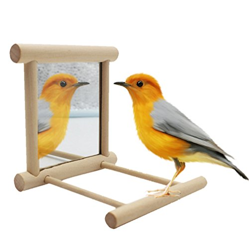 Bird Mirror Toy with Perch Stand for Parrot Budgie Parakeet Cockatiels Conure Finch Lovebird Canary African Grey Macaw Amazon Cockatoo Cage Wood Toy