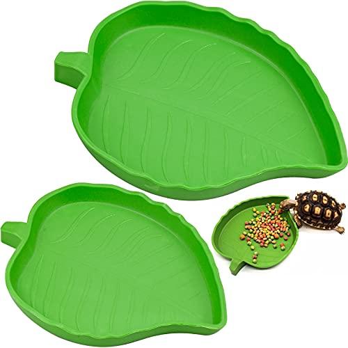 YUENX 2 Piezas Platos Tazones de Agua de Alimentos de Reptil, Mascota Beber y Comer Cuenco de Agua de Comida para Reptiles, Plato de Agua para Tortuga, Geco, Serpiente, Mascotas (Verde)