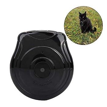 Avec cet appareil photo, les propriétaires d'animaux peuvent observer une ligne cohérente d'enfants. Tous les propriétaires d'animaux sont souvent curieux de savoir que leurs animaux ont disparu. Laissez votre animal de compagnie de votre point de vu...