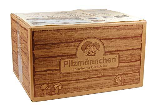 BIO-Pilzzuchtset - Champignon - Pilzzucht