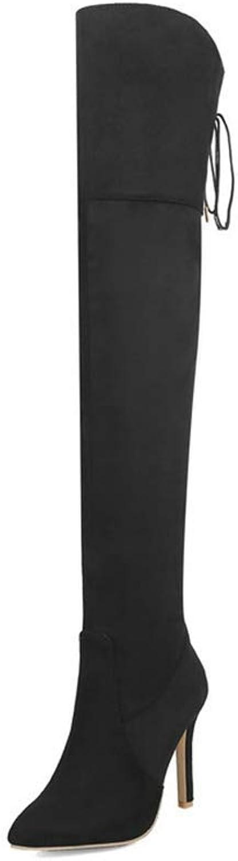 Web Perkin Perkin Perkin kvinnor Winter Pointed Toe Sexy Heel stövlar Zipper Lace Up skor Lady Över Knee höga stövlar  märken online billig försäljning