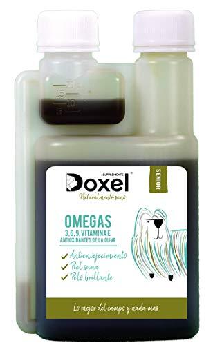 Doxel Senior - 500 ml | Öl für Hunde | Nahrungsergänzungsmittel | Entzündungshemmend | Anti-Aging | Gesunde Gelenke | Immunsystem | Omega 3 6 9-Fettsäuren | Vitamin E | Muskelmasse | Ältere Hunde