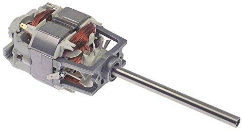 Fimar Motor para batidora FR1G, FR1P, FR2G, FR2P, 230 V, 50 Hz, eje de 10 mm de diámetro, 117 mm de altura, 62 mm de ancho, 70 mm de longitud, eje de 125 mm