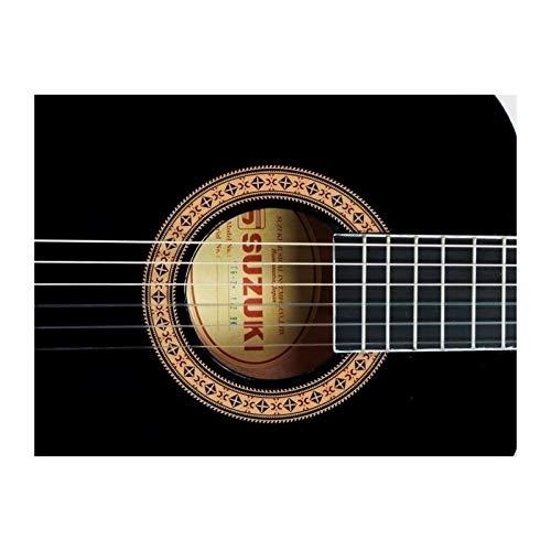 Suzuki SCG2 + 3/4BK guitarra clásica CADETTE Beige: Amazon.es ...