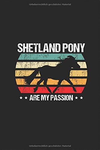 Shetland Pony are my Passion - Notizbuch Kalender 2020 / 2021: Reiten Pferderasse Shetty Schottland Pferd Planer Kalender Taschenbuch Terminkalender ... DIN A 5 Taschenkalender 120 Seiten