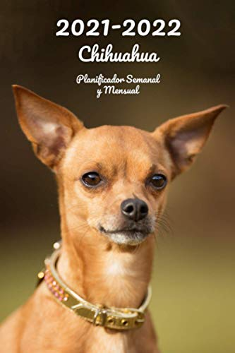 2021-2022 Chihuahua Planificador Semanal y Mensual: 152...