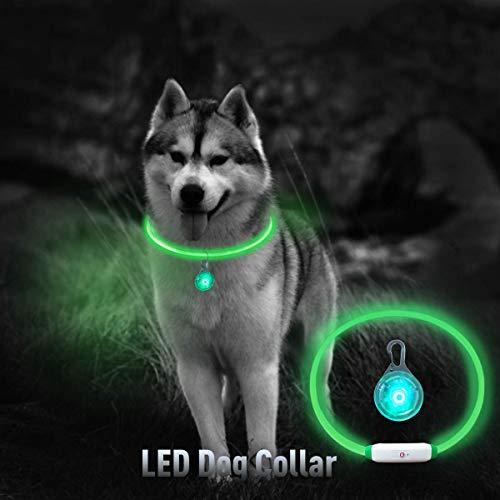 Microwear LED Hundehalsband+1 Sicherheits Clip-On LED Blinklicht,LED Leuchthalsband Hund Halsband USB wiederaufladbar,Längenverstellbarer Sicherheit Kragen für Haustier, 3 Modus