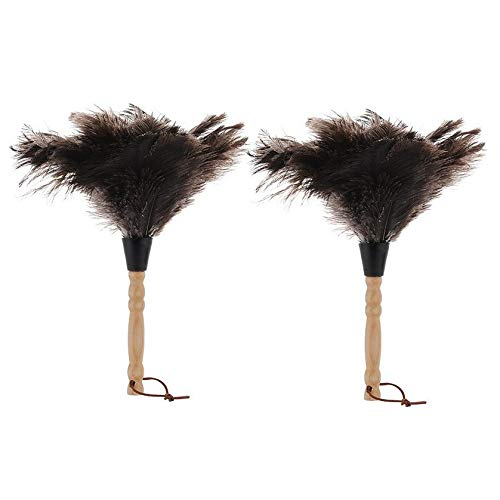 Jcevium 2 Pcs Anti-Static Ostrich Feather Fur Brush Duster Blinds Kitchen Keyboard Dust Cleaning...