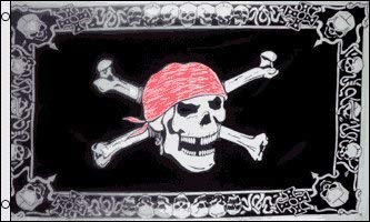 AOOEDM Skull with Border Flag 3' x 5' - Pirate Flags 90 x 150 cm - Banner 3x5 ft