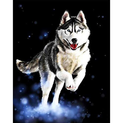 Rompecabezas para niños Adultos 1000 Piezas Rompecabezas para niños Juveniles Juguete de Entretenimiento Decoración Familiar(50x75cm) Perro Mascota