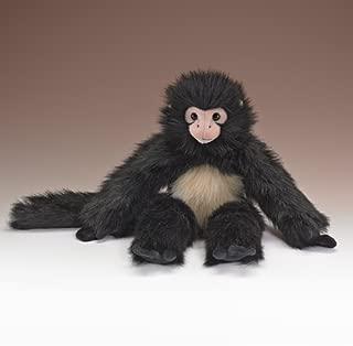 Wildlife Artists Spider Monkey 18