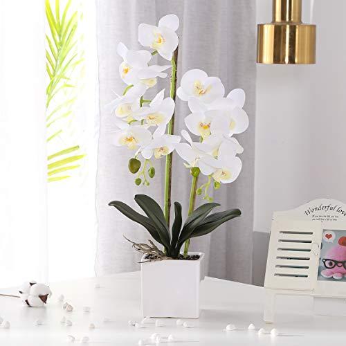 Asvert Phalaenopsis Blanca Flor Artificial Orquídea Bonsai con jarrón de cerámica Banquete de Boda Home Centerpiece Decor (Blanco)