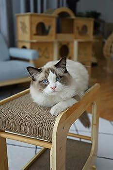 Supremery Griffoir XXL pour chat - En carton ondulé