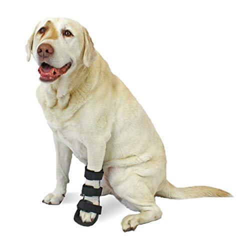 Walkin' Pet Splint for Dogs | Front Leg Foot Splint for Dogs with Arthritis and Injuries