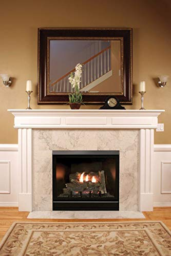 Find Bargain Empire Comfort Systems Tahoe Clean Face Contemporary Fireplace DVCC32BP32P - Liquid Pro...
