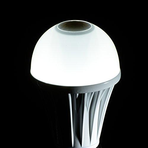 オーム電機『LED電球明暗+人感センサー(LDA8N-HR5106-0608)