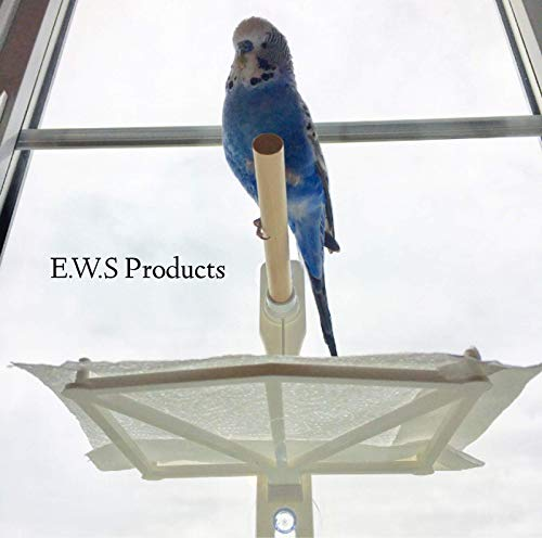 Bird Window and Shower Perch. Stick on Using Suction Cups with Droppings Catchment Tray