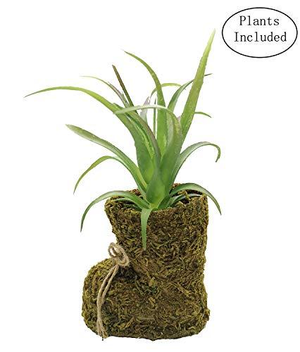 JIUCHEN - Decoración de plantas artificiales artificiales para plantas pequeñas con forma de zapato para casa rústica, oficina, granja, manto, sala de estar, exterior interior