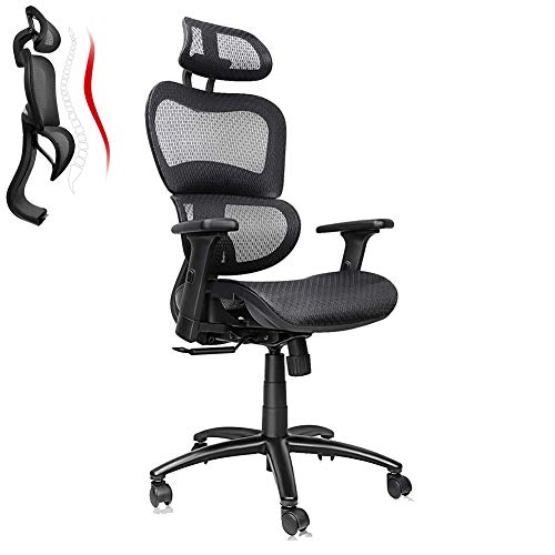 Ergousit Ergonomic Office Chair High-Back Mesh Chair with Lumbar Support, Computer Desk Chair with Adjustable Headrest and 3D Armrests, Swivel Chair for Home and Office