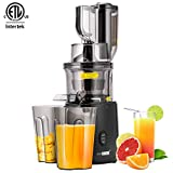 VIVOHOME Juicer Machine Extractor, Slow Cold Press Masticating Squeezer Mechanism Technology, BPA-Free, 55