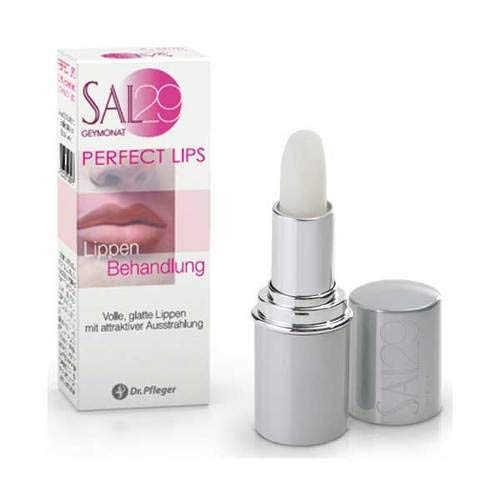 SAL 29 Perfect Lips 4 g
