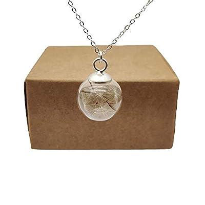 Pissenlit Graine Faire Un Souhait Vraie Fleur Verre Boule Argent Sterling 925 Chaîne Colliers avec pendentifs