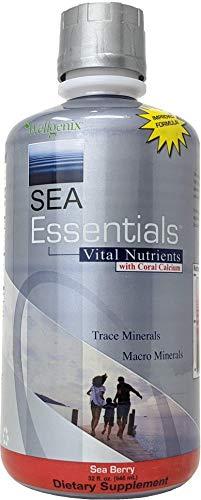 Wellgenix Sea Essentials Coral Calcium Liquid Vitamin For High Absorption - Nutritional Multivitamin Supplement - Sea Berry Flavor (32 oz)