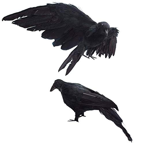 2-Pack Realistic Crows Lifesize Extra Large Handmade Black Feathered Crow for Halloween Decorations...