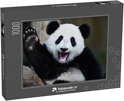 Puzzle 1000 Teile EIN verspielter glücklicher Panda in China - Klassische Puzzle, 1000/200/2000 Teile, in edler Motiv-Schachtel, Fotopuzzle-Kollektion 'Tiere'