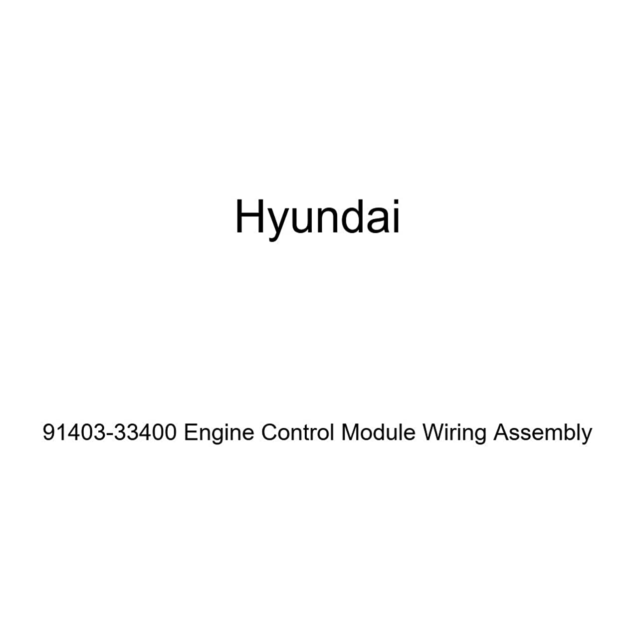 Genuine Hyundai 91403-33400 Engine Control Module Wiring Assembly