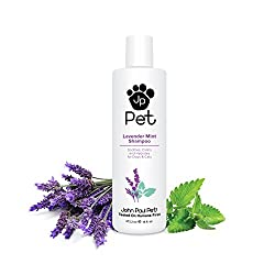 Essential Needs Before Raising A Cat - The Best Cat Shampoo