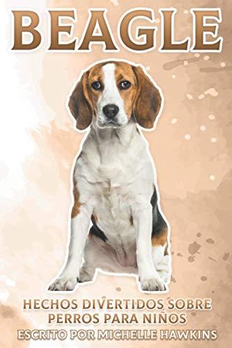Beagle: Hechos divertidos sobre perros para niños #5