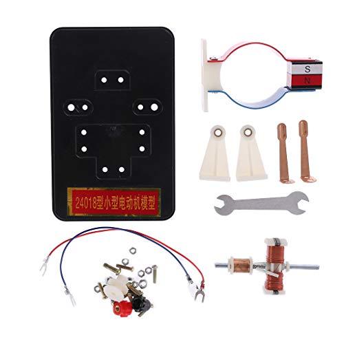 BELTI DIY Einfache DC Elektromotor Modell Montage Kit für Kinder Physik Wissenschaft Lernspielzeug
