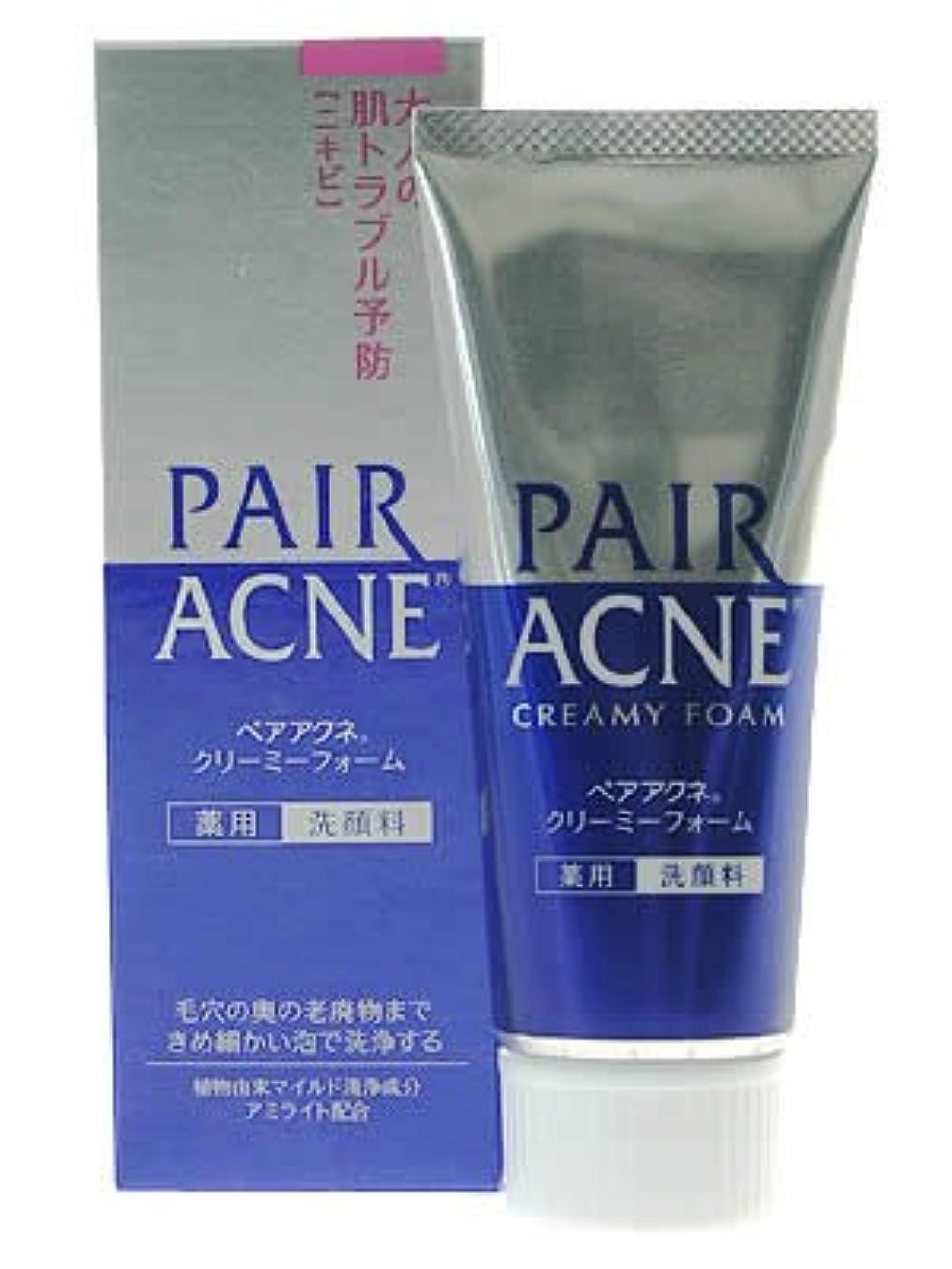 ではごきげんよう誠意純粋にペアアクネ クリーミーフォーム 薬用洗顔料 80g(医薬部外品)