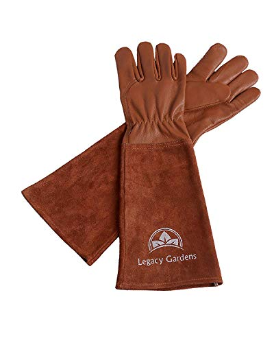 Legacy Gardens Leather Gardening Gloves for Women and Men | Thorn and Cut Proof Garden Work Gloves with Long Heavy Duty Gauntlet | Suitable For Thorny Bushes Cacti Rose Pruning Landscaping Work-XS