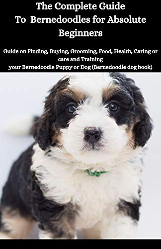 The Complete Guide To Bernedoddles for Absolute Beginners: The Concise Guide on Buying, Grooming, Food, Health, Caring or care and Training your Bernedoddles Puppy or Dog (Bernedoddles dog book)