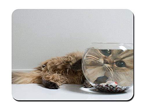 Fluffy kat kijken naar de vis in de kom dier - #43778 - muismat aangepaste rechthoek anti-slip rubber muismat Gaming muis pad