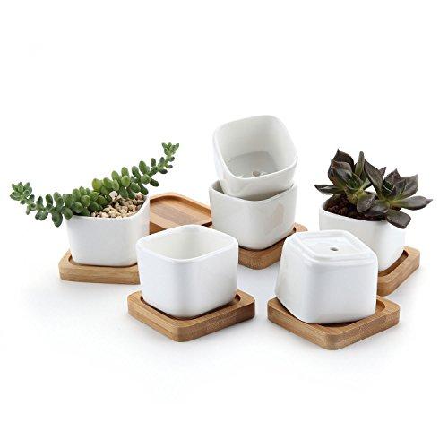 T4U 5.3CM Keramik Sukkulenten Töpfe Kaktus Pflanze Töpfe Mini Blumentöpfe mit Bambusuntersetzer Quadrat Weiß 6er Set