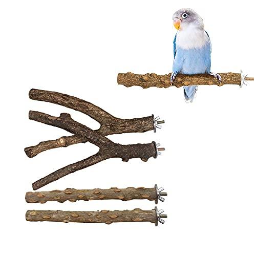4 Piezas Perchas Forma Y para Loros, Perchas para Jaulas Pájaros, Juego Perchas para Pájaros Juguete, Perchas Madera para Pájaros, Ramas Soporte de Aves, para Africano Guacamayo Birds