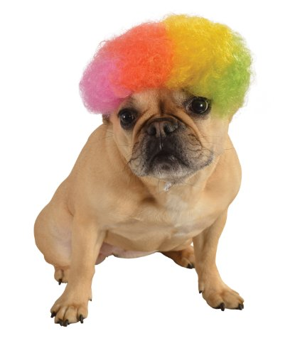 Rubie's Wig for Pets, Medium to Large, Rainbow Afro