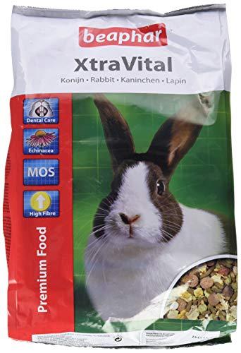 beaphar XtraVital Kaninchen Futter | Ausgewogenes Kaninchenfutter | Mit zahnpflegenden Eigenschaften | Geringer Fettgehalt | Mit Echinacea & Alfalfa | 2,5 kg