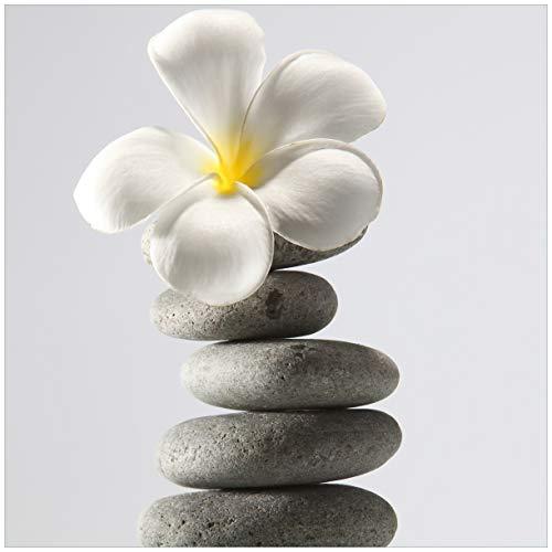 Wallario Magnet für Kühlschrank/Geschirrspüler, magnetisch haftende Folie - 60 x 60 cm, Motiv: Blume auf gestapelten Steinen