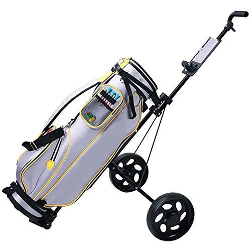 Carro Golf Electrico Con Mando Marca COSCANA