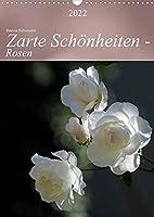 Zarte Schoenheiten - Rosen (Wandkalender 2022 DIN A3 hoch): Edle Koeniginnen der Blumen in ganzer Bluetenpracht (Planer, 14 Seiten )