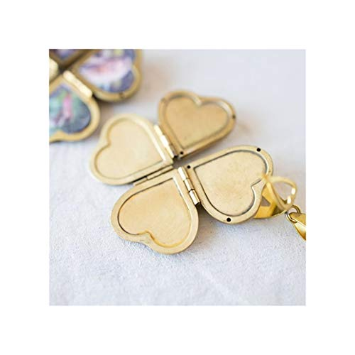 WAZG SYBLD Caja de fotografía de Bricolaje en Forma de corazón Collar Colgante (Metal Color : Gold)