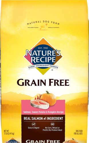 Nature's Recipe Grain Free Dry Dog Food, Salmon, Sweet Potato & Pumpkin Recipe, 12 Pounds, Easy to Digest