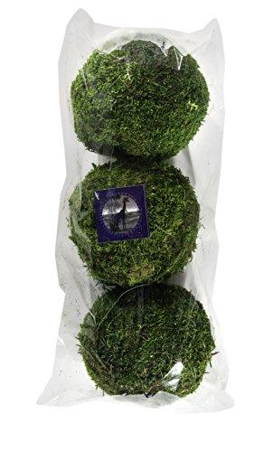 """SuperMoss 7 59834 25541 3 Moss Balls, 4"""" (3 Pack), Fresh Green"""